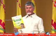 TDP Chandrababu Naidu on AP Panchayat Elections Press Meet Vizagvision
