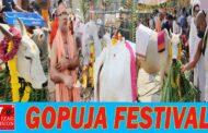 గోపూజా utyas - GoPuja Festival  | gopuja- Srisailam gosala Vizagvision