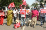 2 కోట్లతో కుక్కల పార్కుకు వ్యతిరేకంగా కుక్కల తో CPM నిరసన in Visakhapatnam Vizagvision