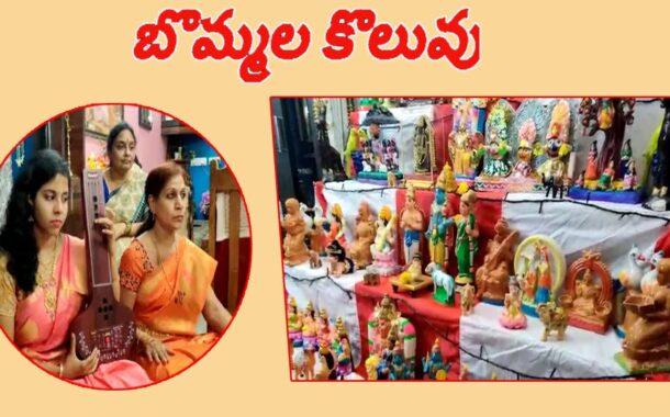 అందరినీ ఆకర్షిస్తున్న అందమైన బొమ్మలకొలువు || సంగీత కళాకారిణి  శ్రీమతి భాగ్యలక్ష్మి || Visakhapatnam